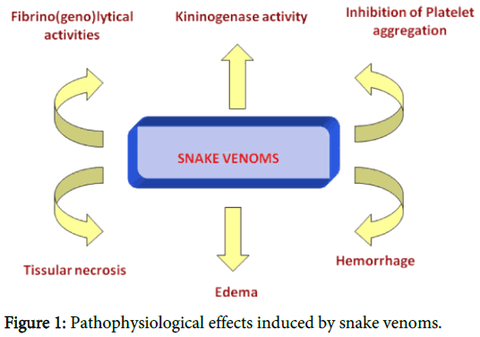 clinical-toxicology-Pathophysiological-effects