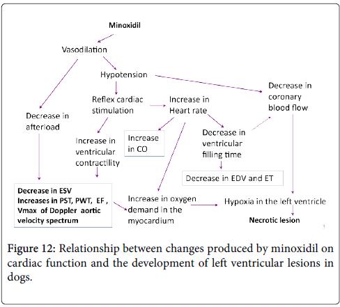 clinical-toxicology-cardiac-function