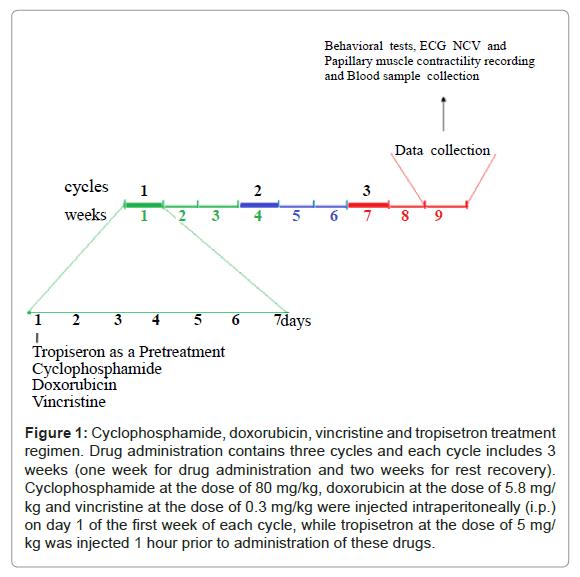 clinical-toxicology-vincristine-tropisetron