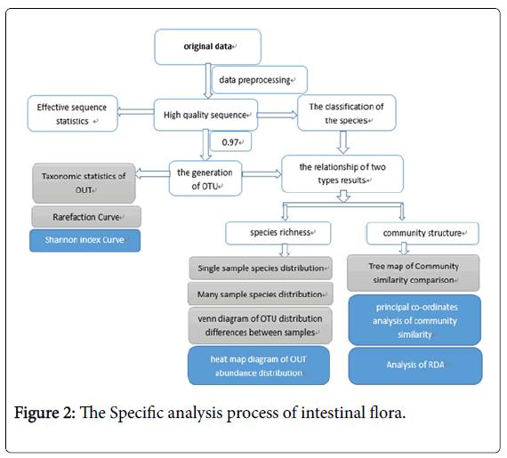 clinical-trials-intestinal-flora