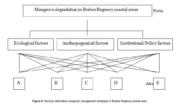 coastal-development-Decision-mangrove