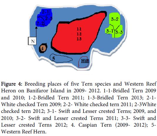 coastal-development-breeding-species-banifaror