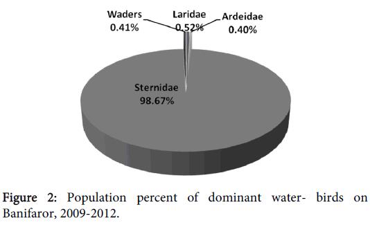 coastal-development-dominant-water-banifaror