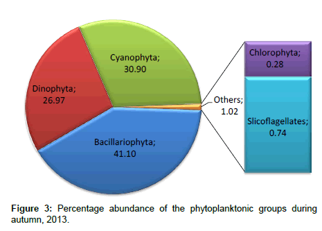 coastal-development-phytoplanktonic