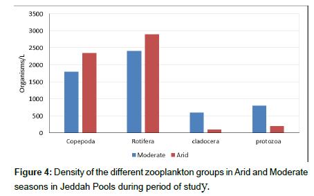 coastal-development-zooplankton-groups