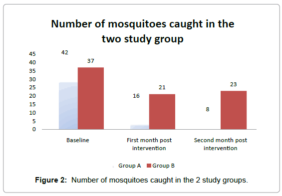 community-medicine-mosquitoes-caught