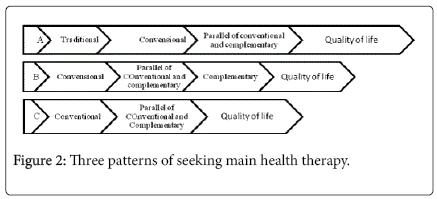 community-public-health-nursing-seeking-main-health-therapy