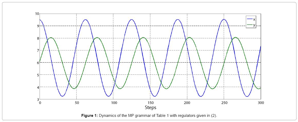 computational-mathematics-dynamics-mp-grammar