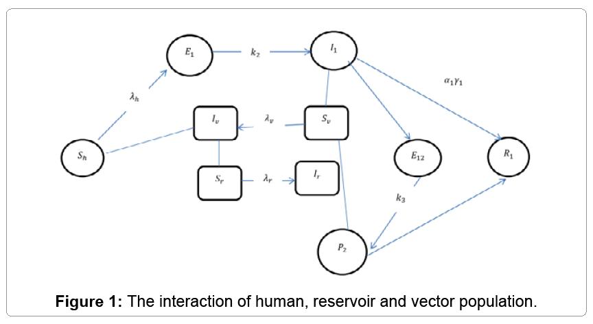 computational-mathematics-interaction-human-reservoir