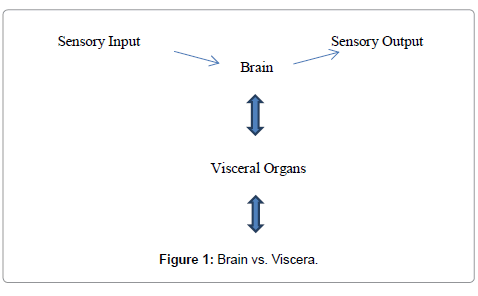 computer-science-systems-biology-Brain-Viscera
