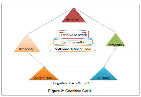 computer-science-systems-biology-Cognitive-Cycle