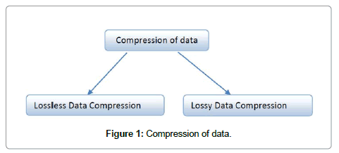 computer-science-systems-biology-Compression-data