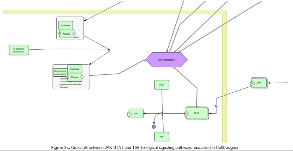 computer-science-systems-biology-Crosstalk-JAK