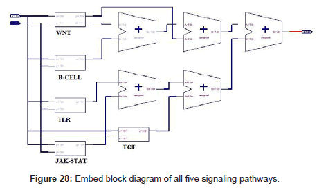 computer-science-systems-biology-Embed-block-diagram