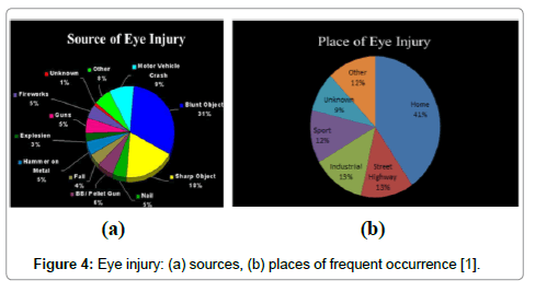 computer-science-systems-biology-Eye-injury
