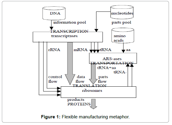 computer-science-systems-biology-Flexible-manufacturing