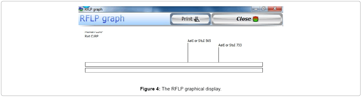 computer-science-systems-biology-RFLP-graphical
