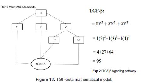 computer-science-systems-biology-TGF-beta