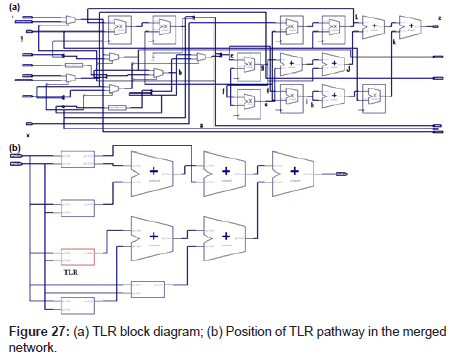 computer-science-systems-biology-TLR-block-diagram