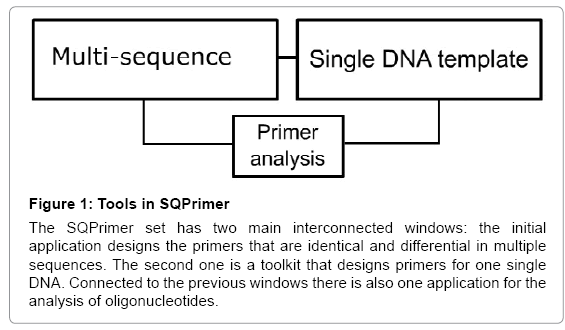 computer-science-systems-biology-Tools-SQPrimer
