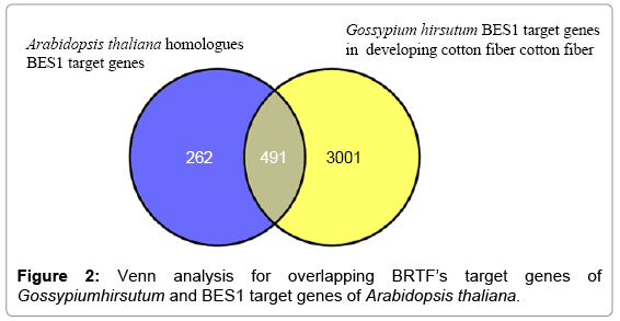 computer-science-systems-biology-Venn-analysis
