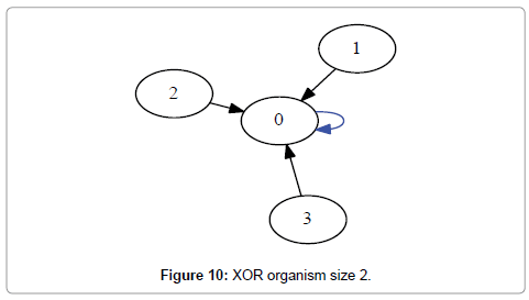 computer-science-systems-biology-XOR-organism