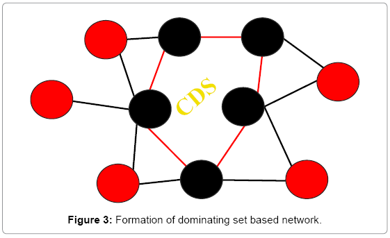 computer-science-systems-biology-based-network