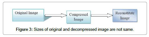 computer-science-systems-biology-decompressed-image