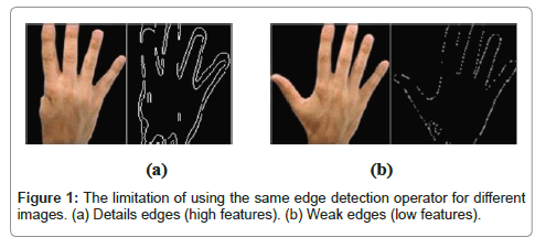 computer-science-systems-biology-edge-detection-operator