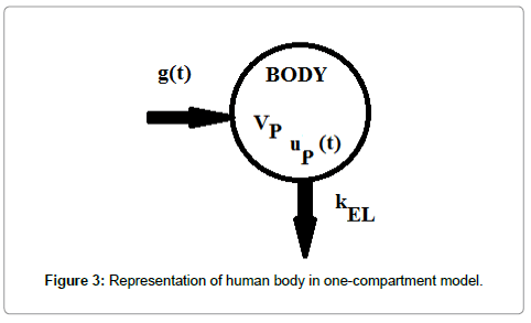 computer-science-systems-biology-human-body