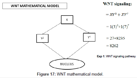 computer-science-systems-biology-mathematical-model