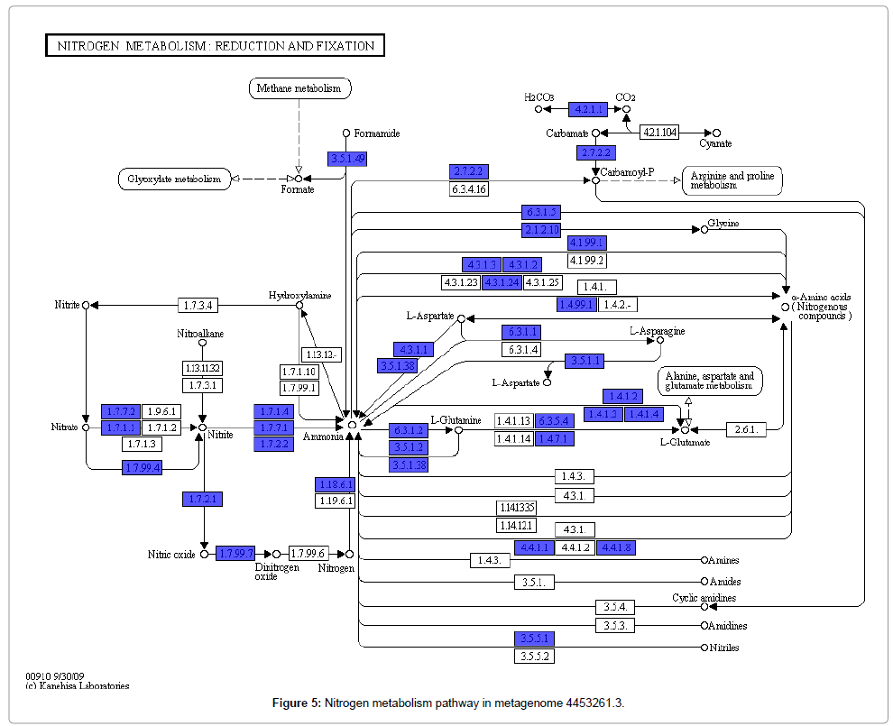 computer-science-systems-biology-metabolism-pathway