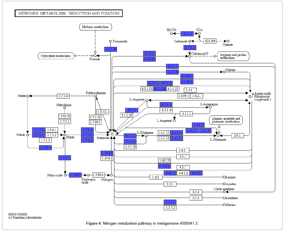 computer-science-systems-biology-metagenome