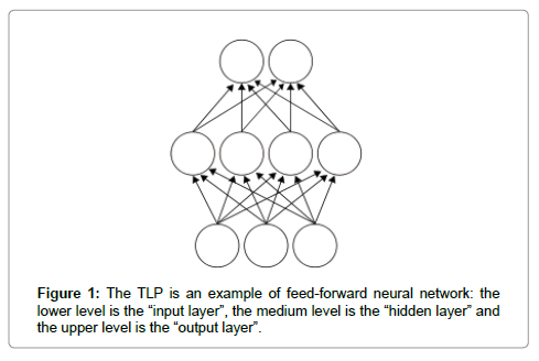 computer-science-systems-biology-neural-network