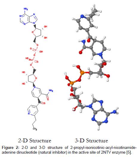 computer-science-systems-biology-nicotinamideadenine-dinucleotide