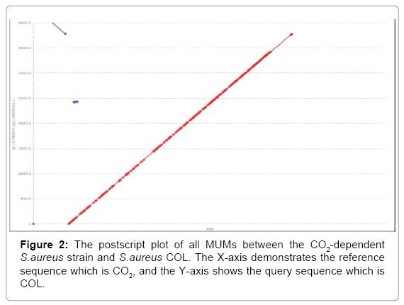computer-science-systems-biology-postscript-plot