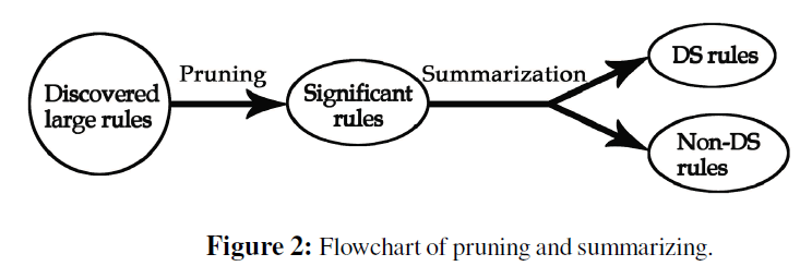 computer-science-systems-biology-pruning