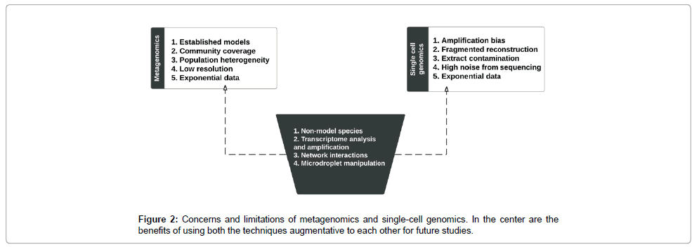 computer-science-systems-biology-single-cell