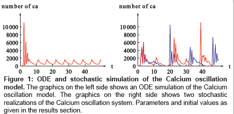 Parameter Estimation for Stochastic Models of Biochemical