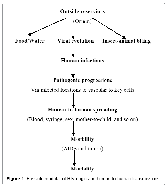 current-research-possible-modular-hiv-origin