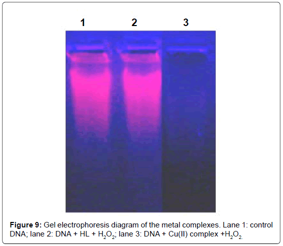 current-synthetic-systems-biology-electrophoresis-metal-control
