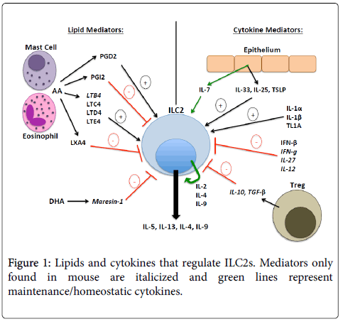 cytokine-biology-Lipids-cytokines