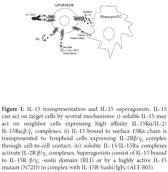 cytokine-biology-target-cells-several-mechanisms