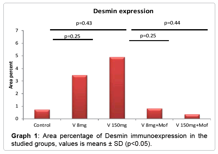 cytology-histology-Desmin-immunoexpression