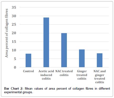 cytology-histology-area-percent
