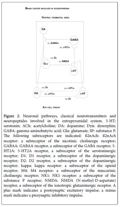 cytology-histology-classical-neurotransmitters