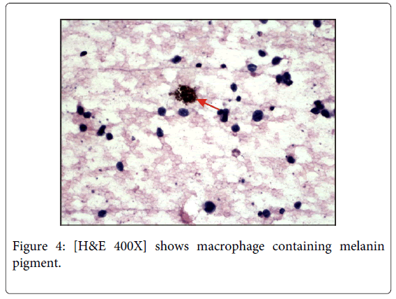 cytology-histology-containing