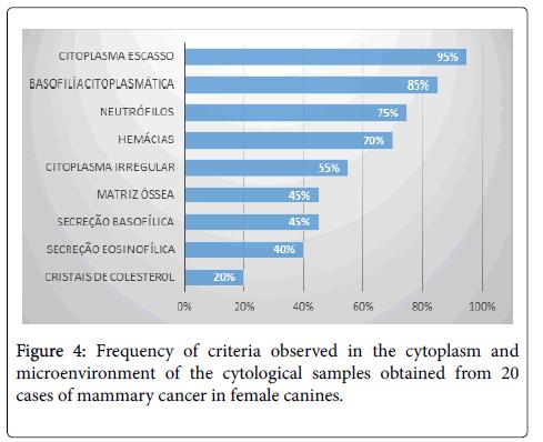 cytology-histology-criteria