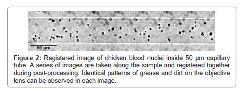 cytology-histology-post-processing