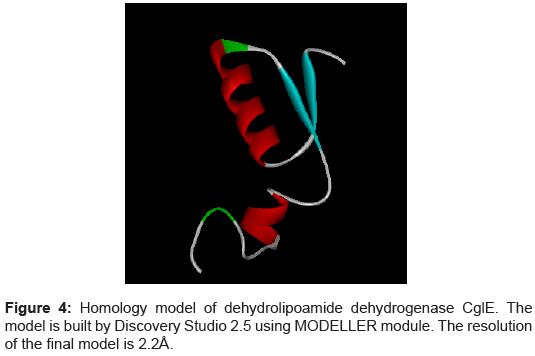 data-mining-genomics-Homology-model-dehydrolipoamide